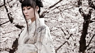 2 HOURS Of The Best Traditional Chinese Music Relaxing Music Meditation Music Zen Music