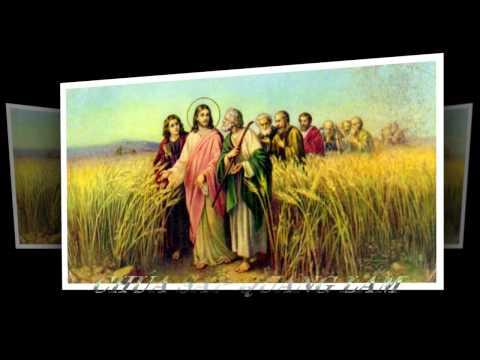 Bài Giảng CHÚA QUANG LÂM - Phần 11 - TẠI SAO THIÊN CHÚA LẠI BAN SỨ ĐIỆP - Tu Sĩ Hèn Mọn