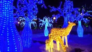 Хабаровск. Парк Динамо. 23.12.2013(, 2013-12-24T06:15:21.000Z)