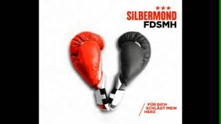 Silbermond - Für dich schlägt mein Herz (FDSMH) - HQ - Lyrics