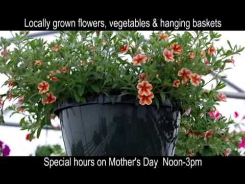 Helena Christian School Plant Sale ProofHD