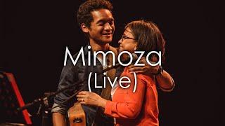 Mimoza - Mahaleo (Bary Raman Feat. Momma Raman & Hopla Gasy - Soirée Solidarité Madagascar)