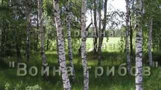 """Русская народная сказка - """"Война грибов"""""""