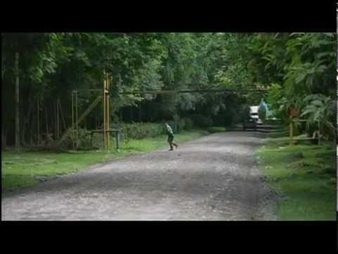 Adventures with Purpose Costa Rica
