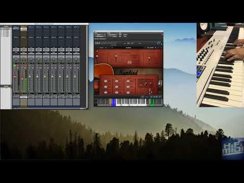 Acoustic Samples Sunbird Demo & Review