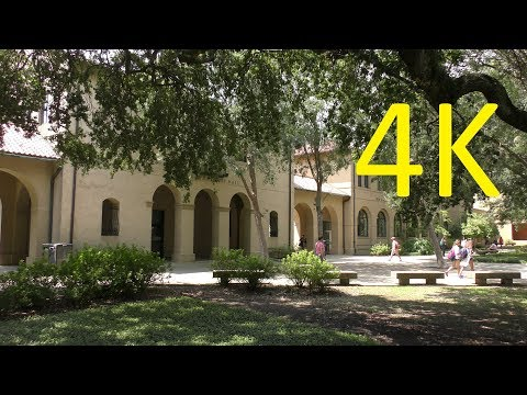 A 4K Tour of LSU (Lousiana State University)