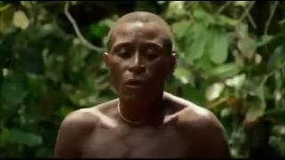 The Pygmy people of the Congo forest - Democratic Republic of Congo