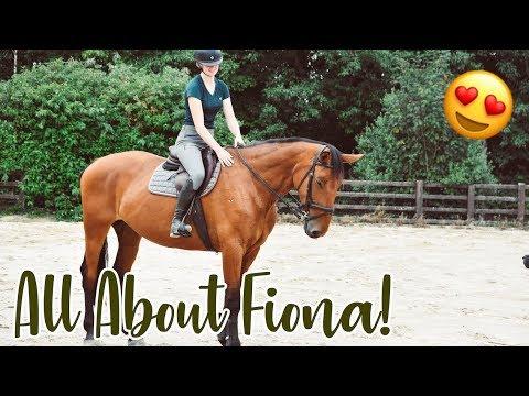 MEET MY HORSE FIONA