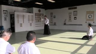 Aikido Jo Nage Training Principles And Leadership Concepts-discussion