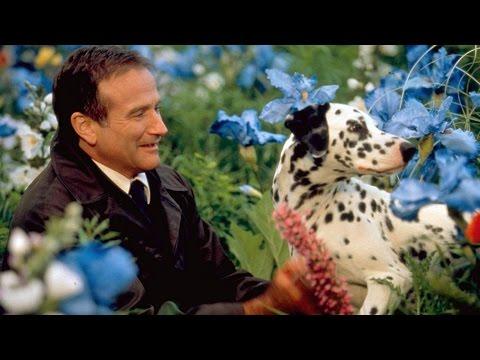 Robin Williams. После смерти только одна дорога - мечта. Памяти Робина Уильямсиз YouTube · Длительность: 4 мин35 с  · Просмотры: более 5.000 · отправлено: 13-8-2014 · кем отправлено: lyarde1
