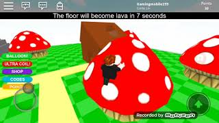 The Roblox floor and lava