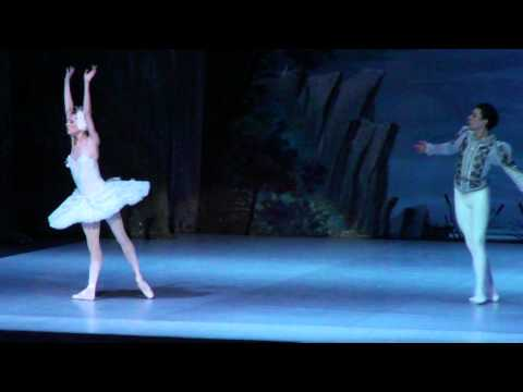 Swan Lake performed by the Russian State Ballet in Frankfurt