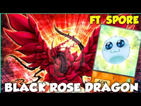 Sylvan-Black Rose Spore Deck | Yu-Gi-Oh! Duel Links thumbnail