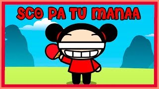 Do you want to know how PUCCA thinks? SCO PA TU MANAA!