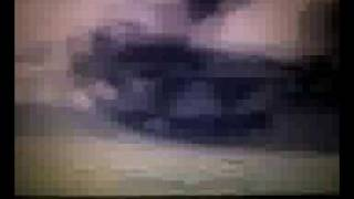 leopard-2a4  finland tank/panzer porno