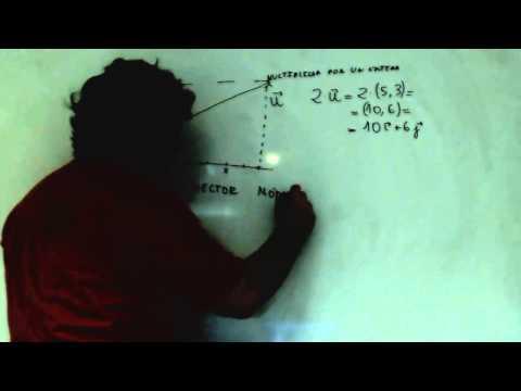 vectores-fisica-1º-bachillerato-academia-usero-estepona
