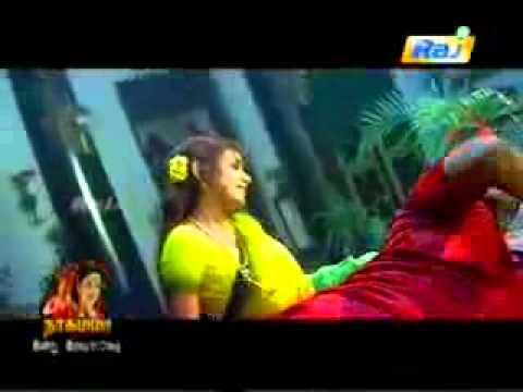 chaya  singh sexy saree song