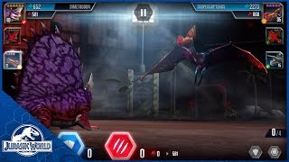 Battle: Level 40 Dimetrodon vs Level 35 Tropeogopterus