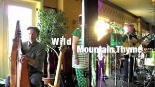 Wild Mountain Thyme ,Quay Street Brewery, Port Huron, Mi.,  Celtic Cross Band
