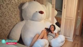 Самый большой плюшевый медведь Самсон 220 см