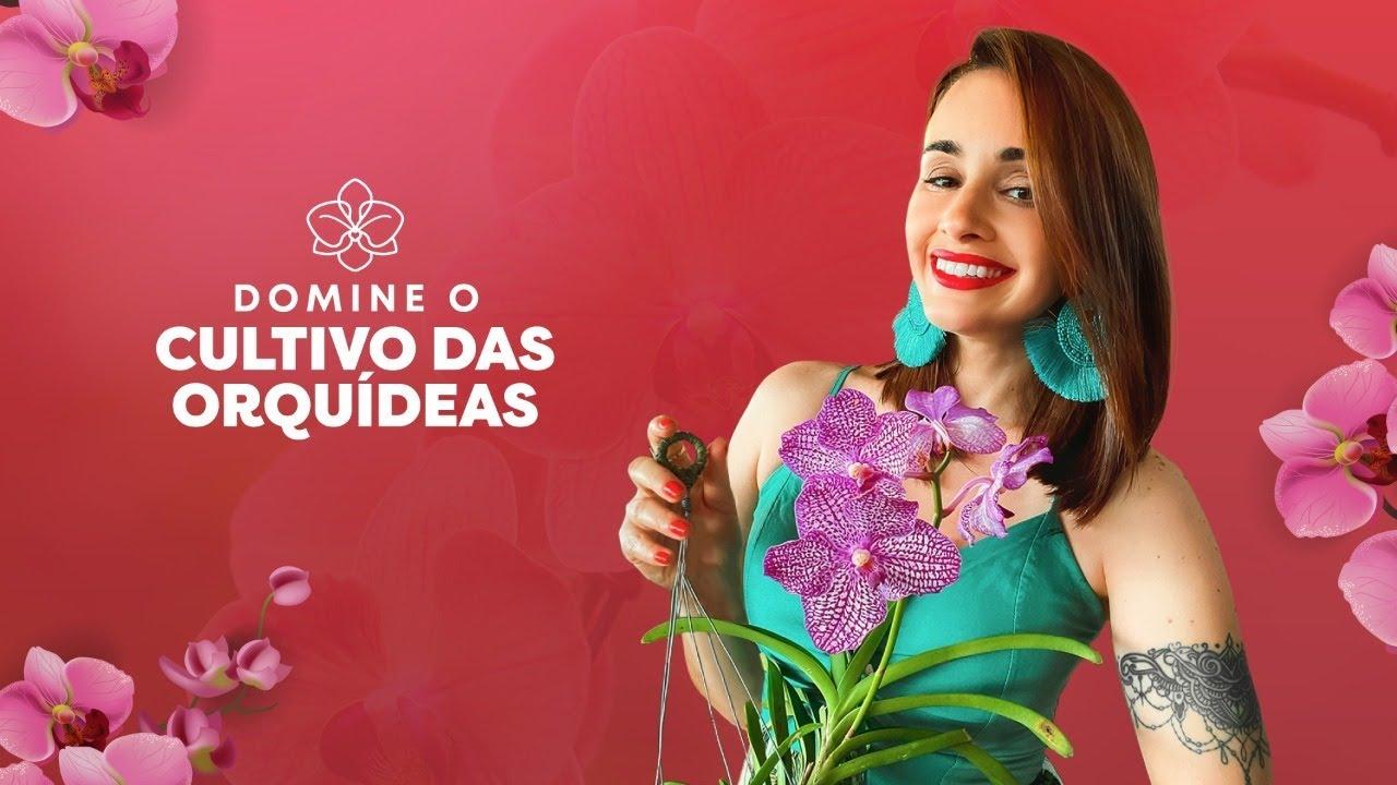 🔴 Domine o Cultivo das Orquídeas