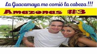 Video AMAZONAS #3 CON KAPAX EL TARZAN COLOMBIANO Y FLOR DE LOTO CON PASAPORTE EXPRESS download MP3, 3GP, MP4, WEBM, AVI, FLV November 2017