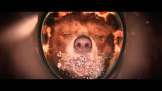 Приключения Паддингтона - Trailer