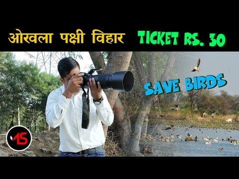 Okhla Bird Sanctuary Full Tour | Save Birds | Delhi Tourism | mSharif Vlogs