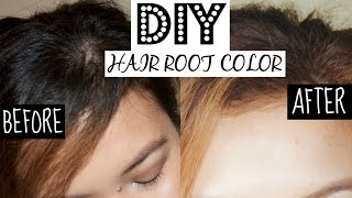 DIY HAIR COLOR FROM BLACK TO LIGHT BROWN