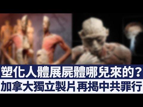 塑化人體展屍體從哪兒來的?中共殺害良心犯早已不是秘密 新唐人亞太電視 20190418