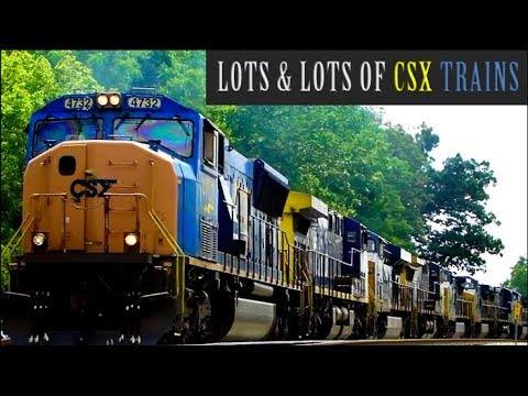 Lots & Lots of CSX Freight Trains