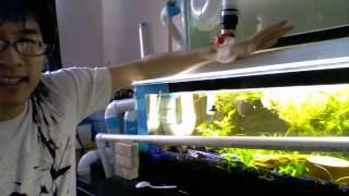 Best Diy Aquarium Lights