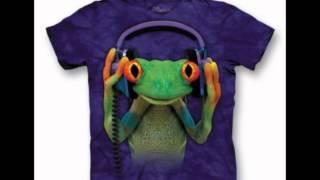 Gecko - Subarashii