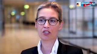 """Sach- statt Geldleistungen für Asylbewerber! - Alice Weidel zur SPD-""""Taschengelderhöhung"""""""