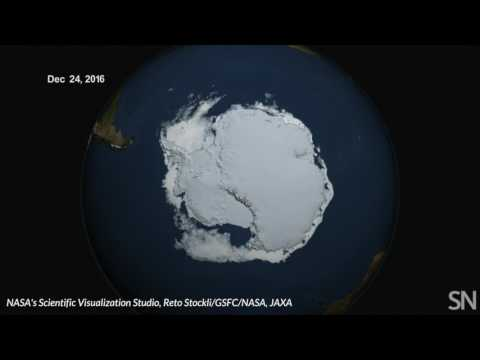 Antarctic sea ice hit a new low | Science News