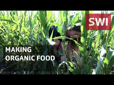 What research can do for organic farming