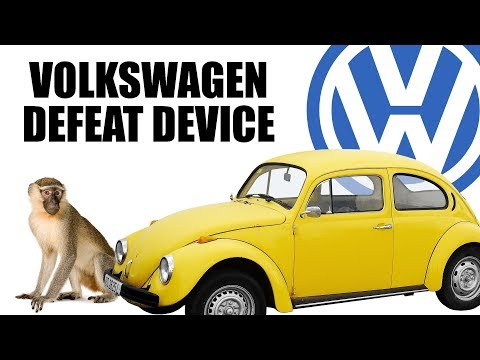 Volkswagen Gassed Monkeys To Prove Diesels Are Clean