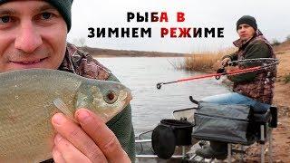 Рыбалка на фидер / Как ловить осенью на фидер