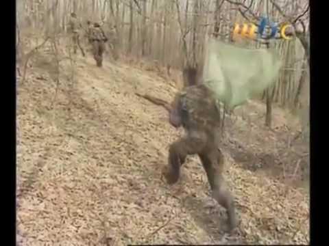 Sedma Muslimanska Brigada 3. Korpus