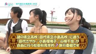https://www.jstage.jst.go.jp/article/jssst/20/6/20_6_607/_pdf 積み...