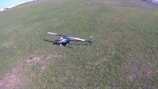 T-Rex 600L Dominator First Flights With 4.5 Tail Ratio