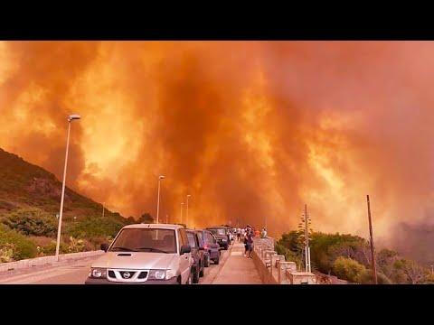 Аномальная жара и масштабные пожары ударили по Сицилии. Жителей Катании эвакуировали