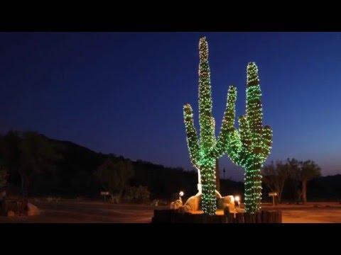 Arizona Christmas Dave Vitagliano The Volunteers - YouTube