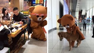 Street Troll - Funny Brown Bear Handing Out Leaflets | Funny Troll - Funny Pranks 2019 (P02)