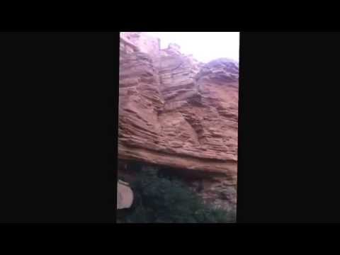 Sound of pond frog in a desert in Riyadh (Saudi Arabia)