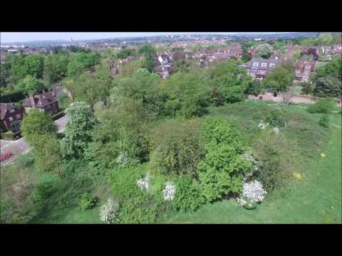 Cricket, Hampstead Heath - Dji Phantom 3