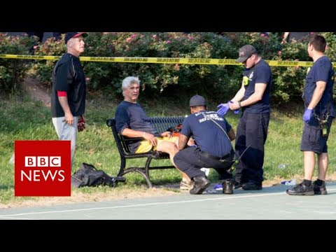 Virginia shooting: Gunman opens fire on top politicians - BBC News