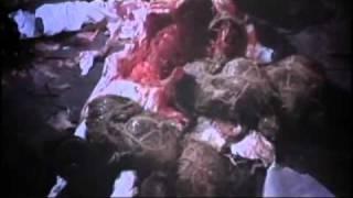 Bacterium (2006) Trailer Ingles