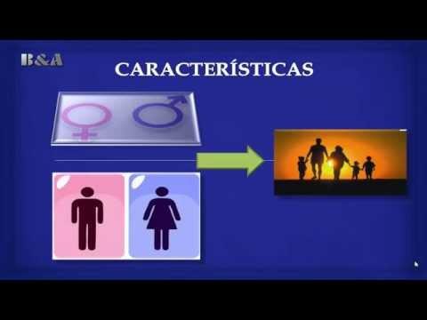 Matrimonio Divorcio Y Asistencia Familiar En La Ley 603