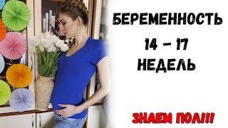 видео 14 неделя беременности - все о беременности. Как проходит 14-я неделя беременности